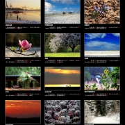 Kalenderposter 2007