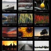 Kalenderposter 2008