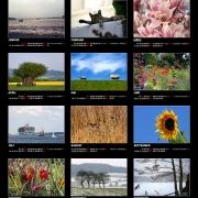 Kalenderposter 2011