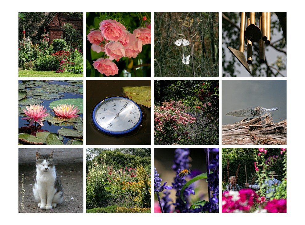Sommer im Arboretum
