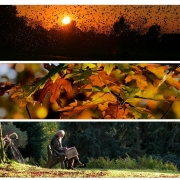 Colours: Herbst