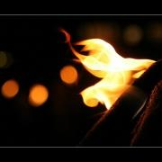Feuer | Fackelzug